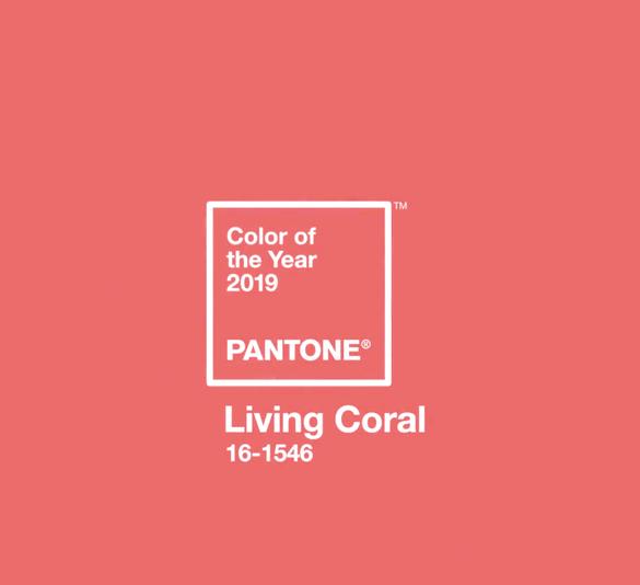 farba roka 2019