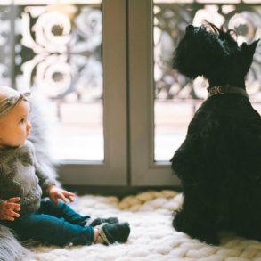 Dieťa a zviera v jednej domácnosti