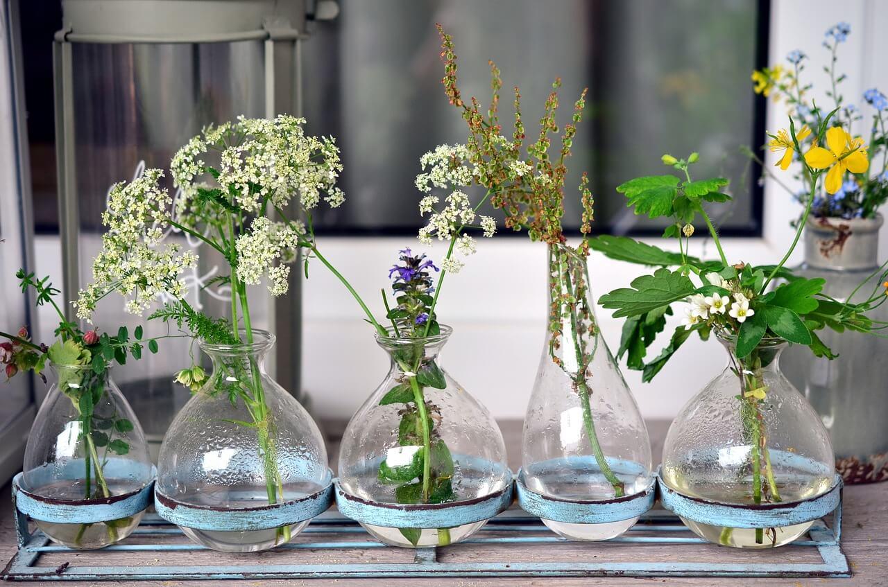 bylinky na balkóne