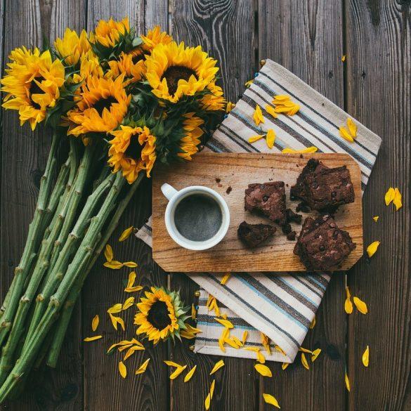 recepty na fit koláč s proteínom