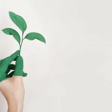 Starajte sa o domácnosť ekologicky