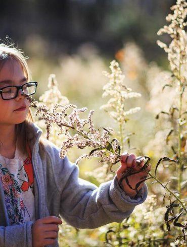 Ako prebudiť v dieťati lásku k prírode?