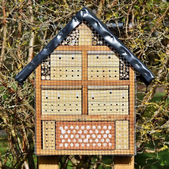 Vyrobte si domček pre hmyz na váš balkón alebo záhradu