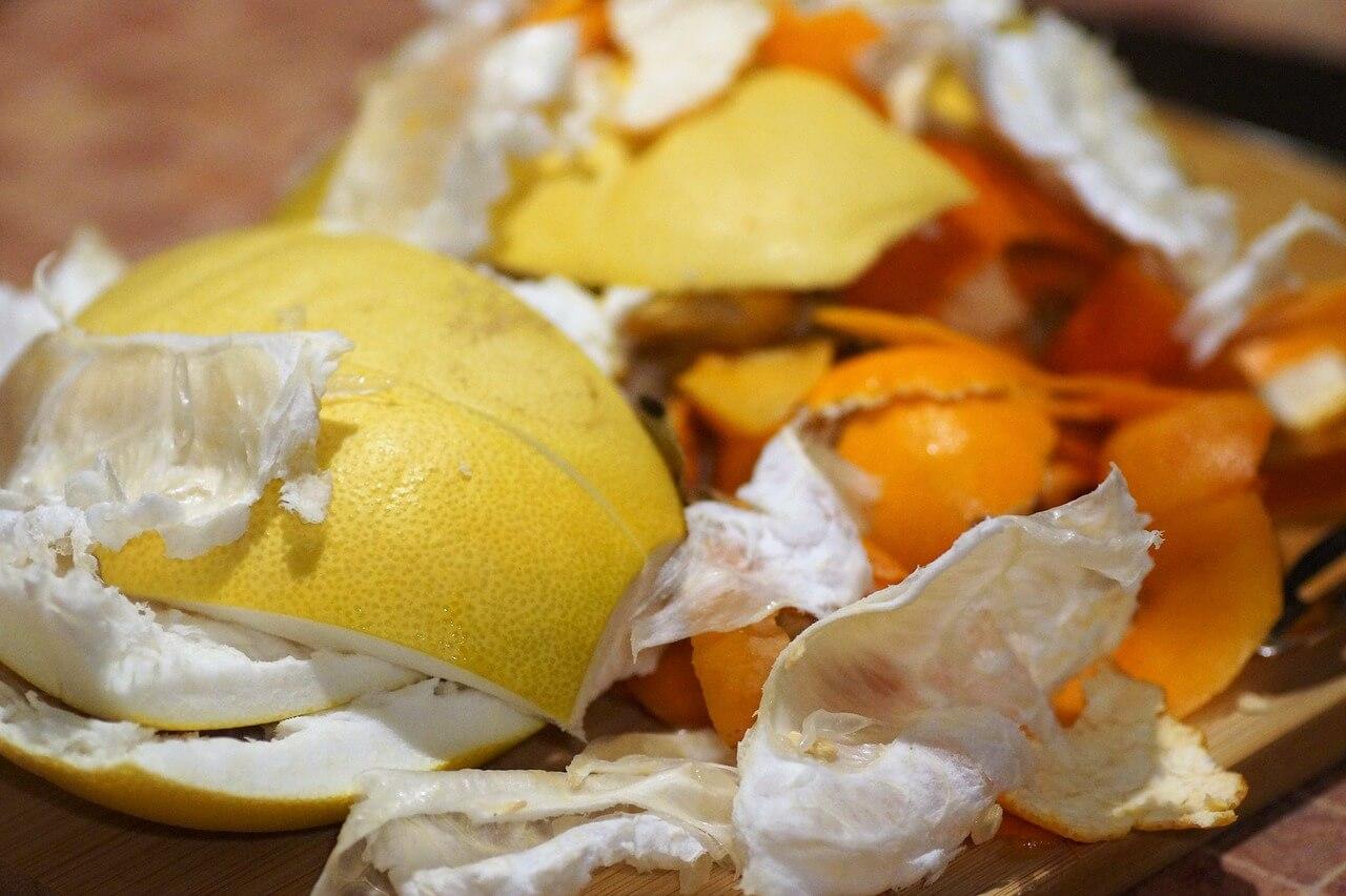 do kompostéra nepatria citrusy