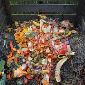 Čo patrí do kompostéra a čo nie