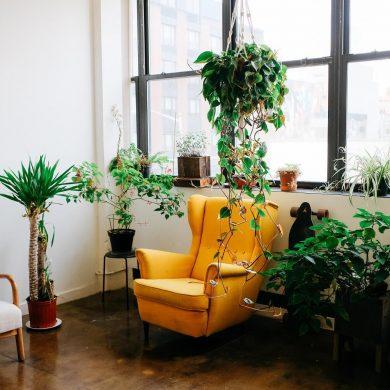 Toto dodá obývačke nový život