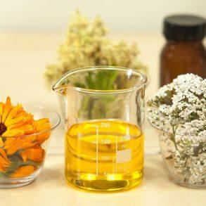 Vyrobte si liečivý olej z nechtíka