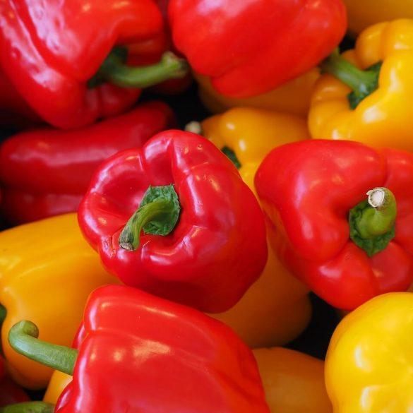 Plnená paprika pre klasikov
