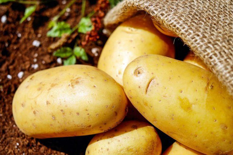 Ako správne skladovať zemiaky počas zimy