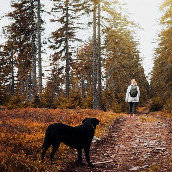 5 záľub, ktoré z vás urobia lepšieho človeka