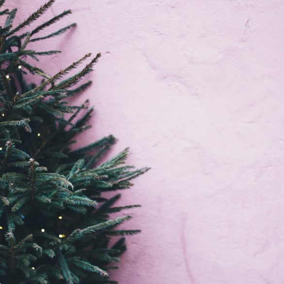Hogyan válasszunk karácsonyfát?