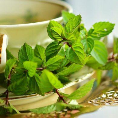 Tieto bylinky a zelenina vám pomôžu nakopnúť metabolizmus