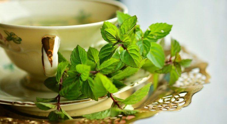 Vannak-e zsírégető hatású gyógynövények? A dietetikus válaszol | mapszie.hu