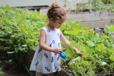 Játszás a kertben kor szerint