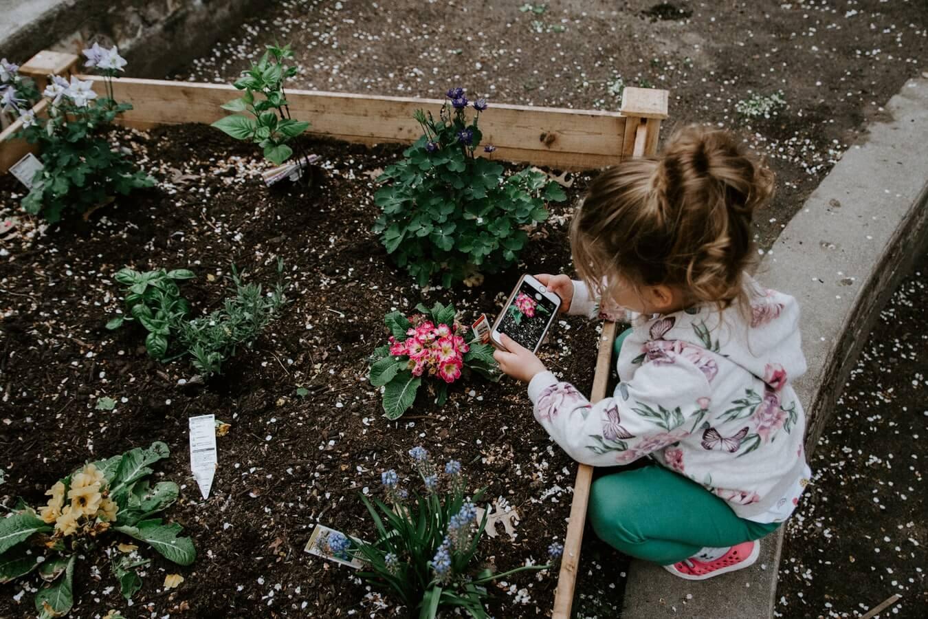 Deti zaujme ovocie a zelenina, ktoré rýchlo rastú