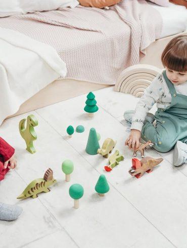 Ako vytriediť hračky