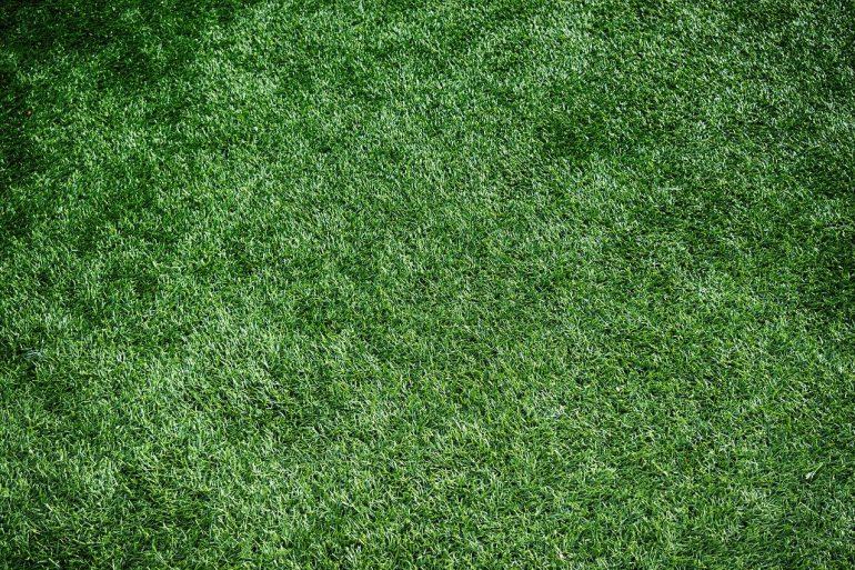 Letná starostlivosť o trávnik