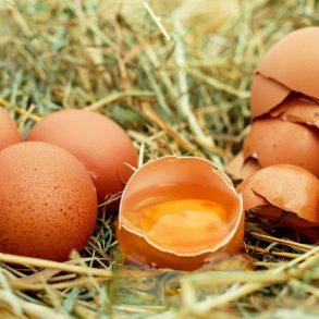Škrupiny z vajíčok nevyhadzujte