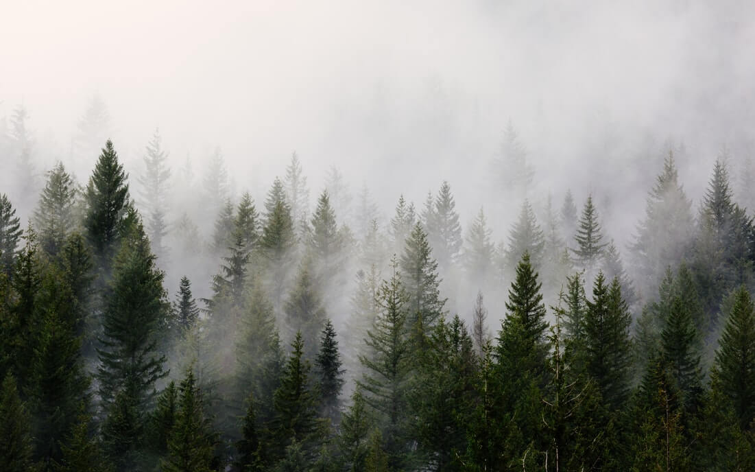 11 lélegzetelállító fotót 8