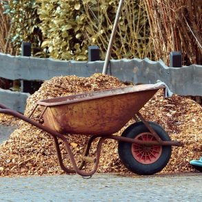 Prečo aj na jeseň nastielať pôdu v záhrade?
