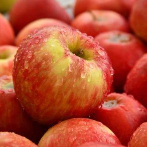 Mihez kezdjünk ősszel asok almával?