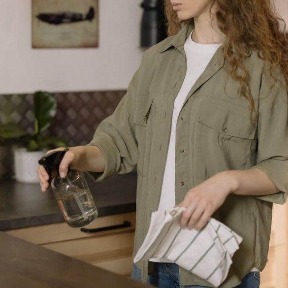 Cum să scapi de gândaci din casă și să eviți apariția lor