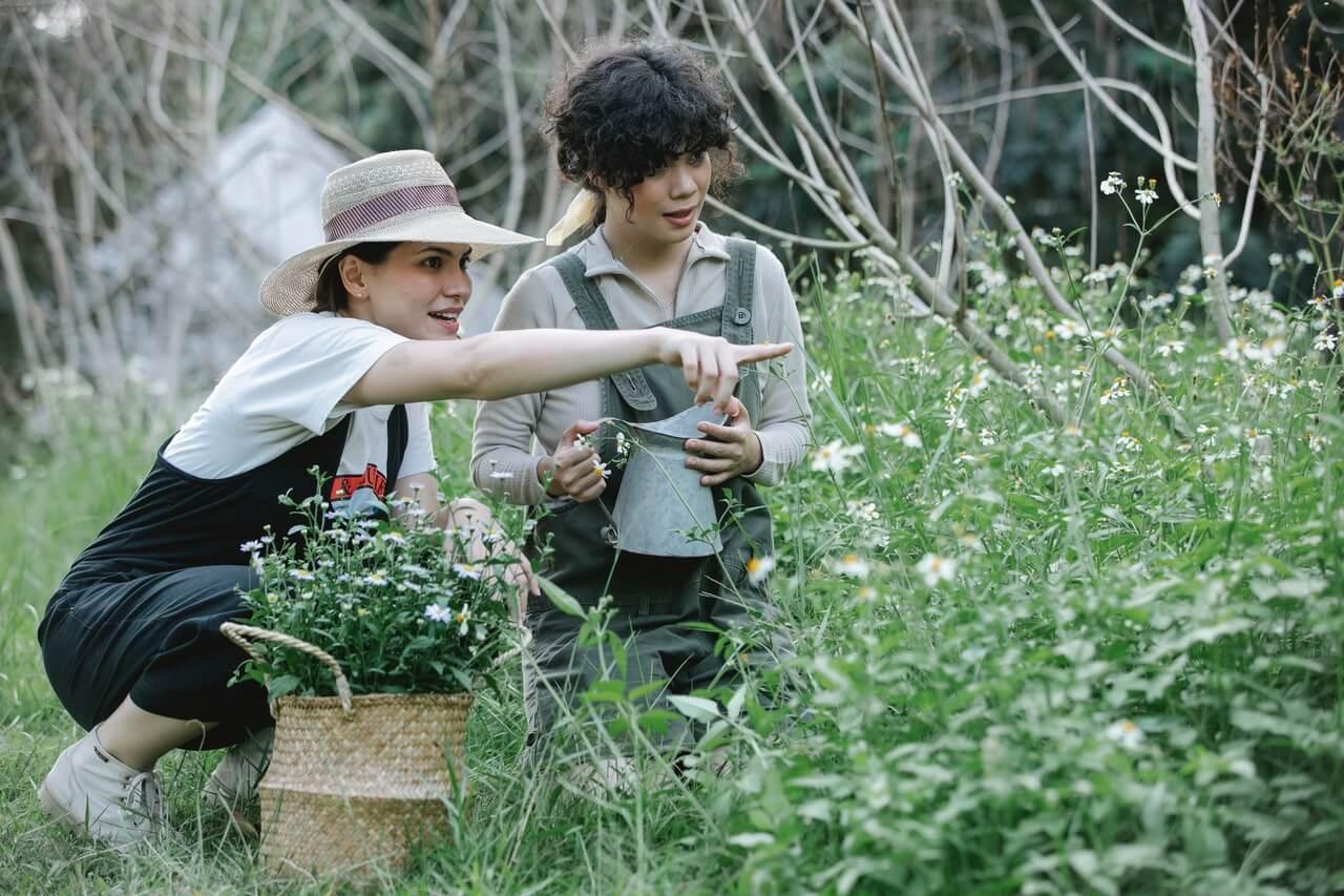 Čo robiť v apríli v kvetinovom záhone?