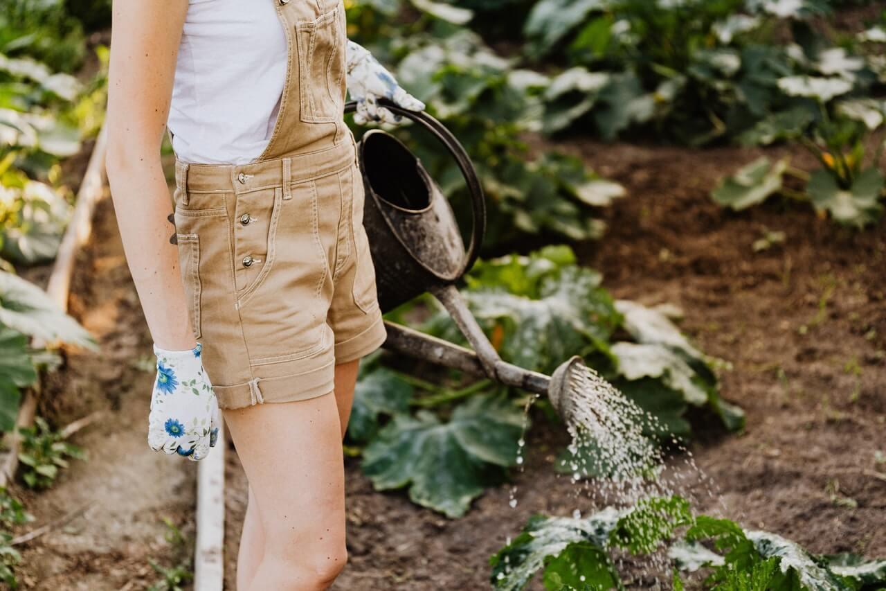 Ušetrite vodu v záhrade