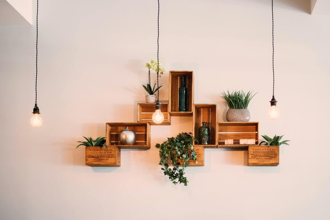 Mať doma množstvo rastlín zlepšuje nielen vnútornú klímu